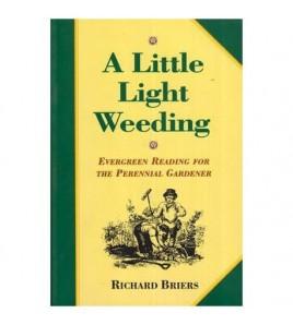 A Little Light Wedding