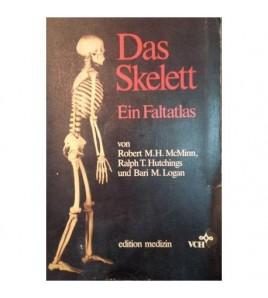 Das Skelett. Ein Faltatlas...