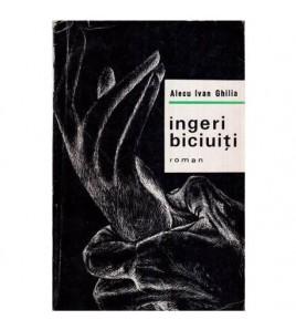 Ingeri biciuiti - Roman