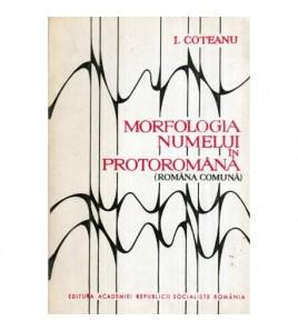 Morfologia numelui in...