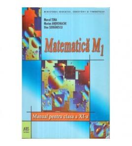 Matematica M1 Manual pentru...