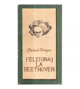 Pelerinaj la Beethoven