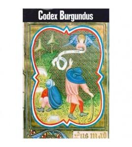 Codex Burgundus
