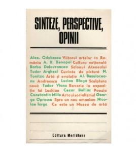 Sinteze, perspective, opinii