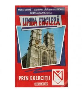 Limba engleza prin exercitii