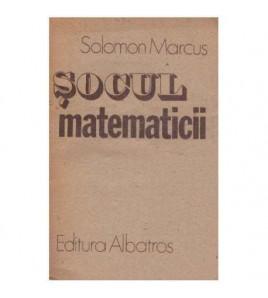 Socul matematicii