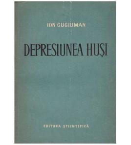 Depresiunea Husi