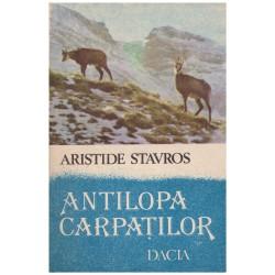 Antilopa Carpatilor