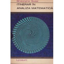 Itinerar in analiza matematica