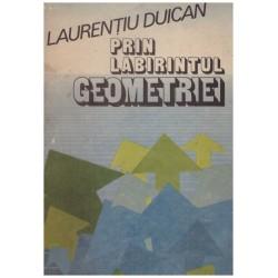 Prin labirintul geometriei