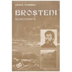 Brosteni - monografie