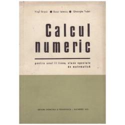 Calcul numeric - pentru...