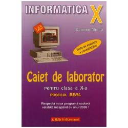 Informatica X - caiet de...