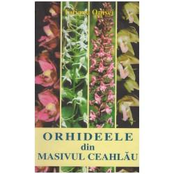 Orhideele din Masivul Ceahlau