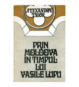 Prin Moldova in timpul lui...