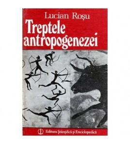 Treptele antropogenezei -...