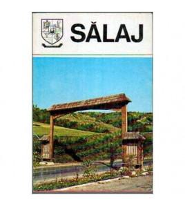 Salaj
